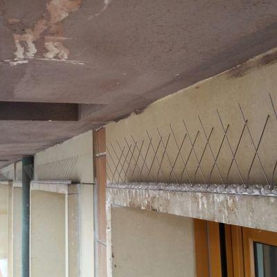 Colocación de pinchos anti-palomas en fachada