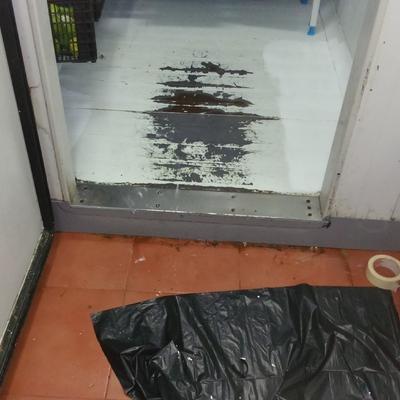 Reparaciones y mantenimiento cámara frigorífica