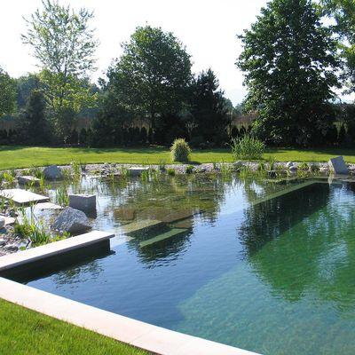 7 cosas que necesitas saber sobre las piscinas naturales
