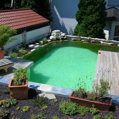 Piscina estanque