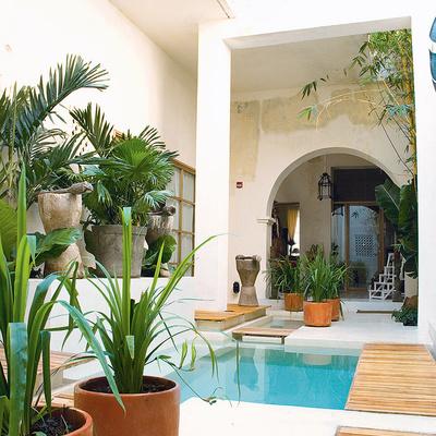 Ideas de piscina y jard n para inspirarte habitissimo for Piscinas pequenas para patios