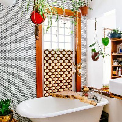 Ideas y fotos de decoraci n plantas colgantes para - Plantas para banos ...