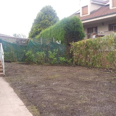 Adecuación de un jardín en Colloto: desbrozar y preparar terreno