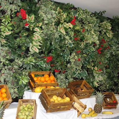 Proyecto-restaurante-Holiday-Village-jardin-vertical