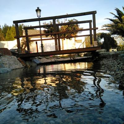 Fabricación de estanque natural en vivienda unifamiliar