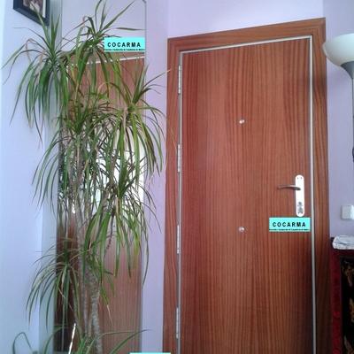 Ideas de cambiar puertas para inspirarte habitissimo - Cambiar pomo puerta ...