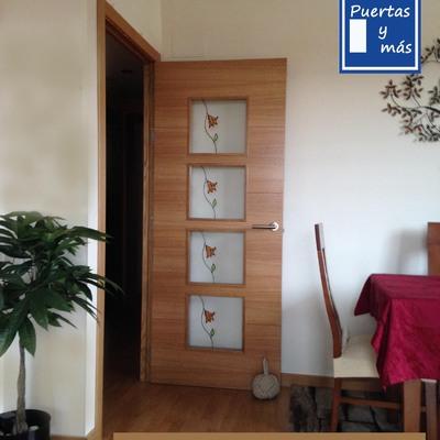 Puerta Con Vidrios De Resina