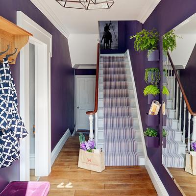 recibidor violeta