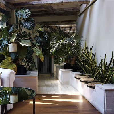 Recibidor con plantas