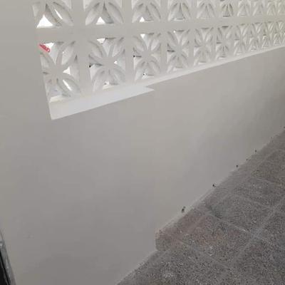 Rehabilitación de muro