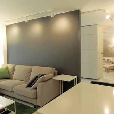 Reforma interior de un apartamento de soltero