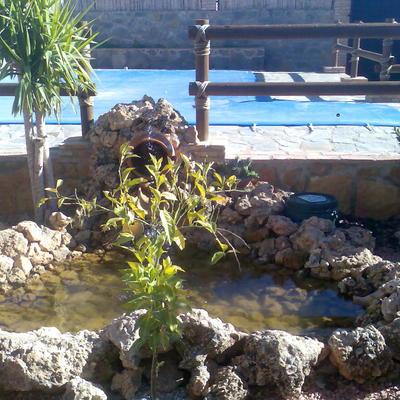 reforma porche y jardín particular