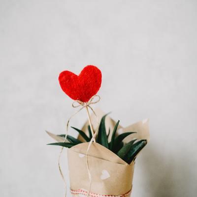 7 formas especiales de envolver los regalos