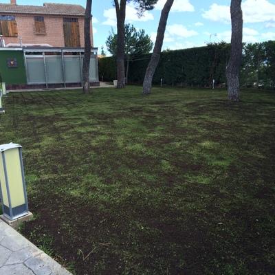 Jardinería en Valladolid