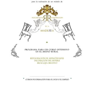 Currículo Profesional como DOCENTE en Restauración, Rehabilitación y/o Decoración.