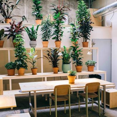 Robot House Barcelona, espacio cultural y creativo