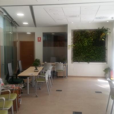 Adecuación de local a despacho profesional
