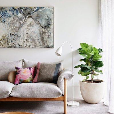 Decora con plantas dentro de casa