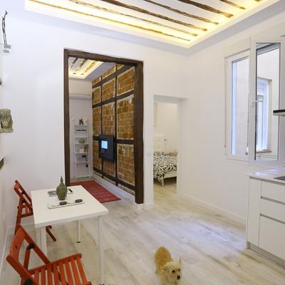 Reforma de vivienda del siglo XIX en Madrid