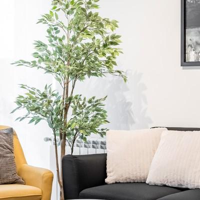 Home Staging para alquiler en Arganda