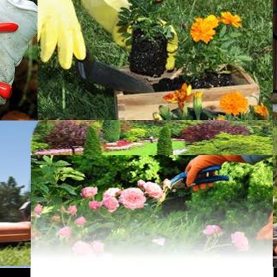 Mantenimiento e instalación de jardines