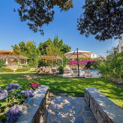 Aprende a cuidar tu jardín como un profesional