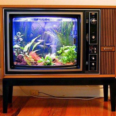 TV antigua reconvertida en pecera