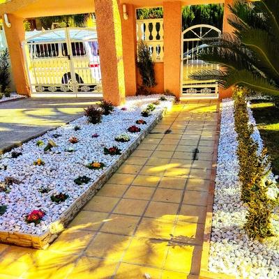 Diseño y Creación de un jardín lleno de color