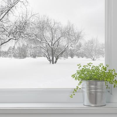7 revisiones y reparaciones que vale la pena hacer antes de invierno