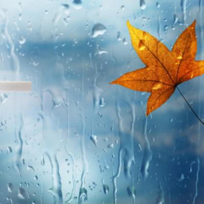 Ventana_otoño272