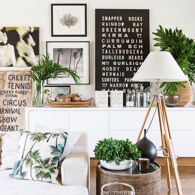 plantas en el salón
