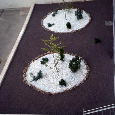Mantenimiento de Jardines en Colegio Marianistas (Ciudad Real)