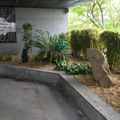 Un jardín mágico para el hotel Zouk
