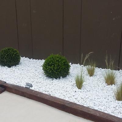 zona jardinera lateral foto