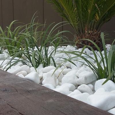 Zona jardinera lateral (foto 5)