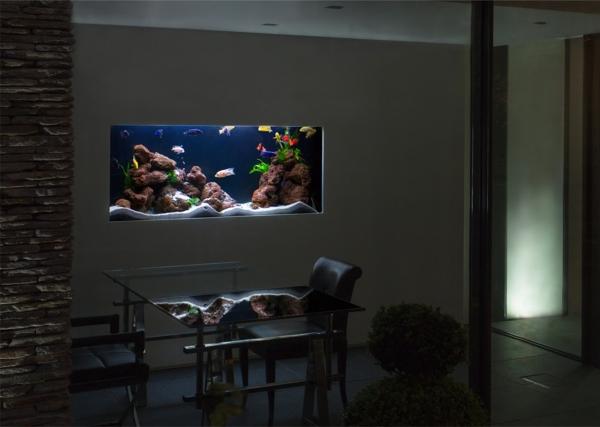Foto acuario incrustado en la pared de elenatorrente d az for Arredamento acquario