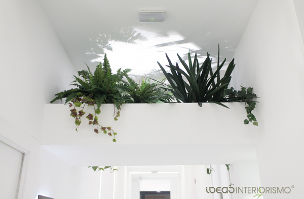 Detalle de la vegetación y la luz indirecta.