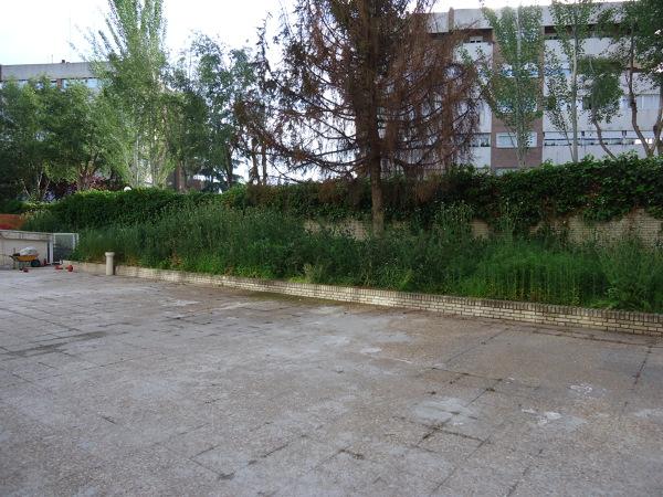 Foto estado previo de plantea jardiner a y paisajismo for Jardineria y paisajismo fotos