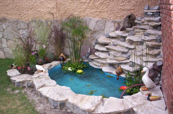 Foto estanque 913973 habitissimo for Cascadas jardin zen