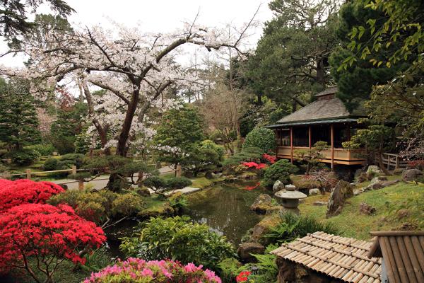 Foto jard n japon s de elenatorrente d az 846090 for Jardin japones piscina