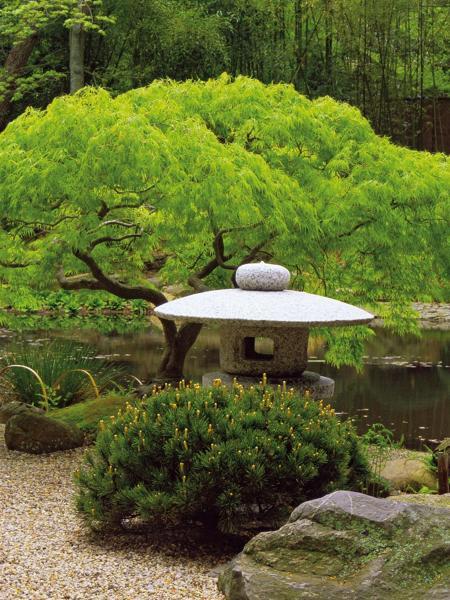 Foto Jardín Japonés de Elenatorrente Díaz #846119  Habitissimo