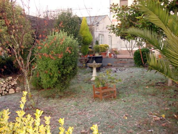 Foto jardin por arreglar de nortrep arboricultura 410608 for Arreglar jardin