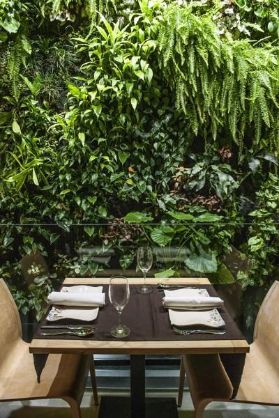 Jardin Vertical sin gasto de agua. Desde la mesa