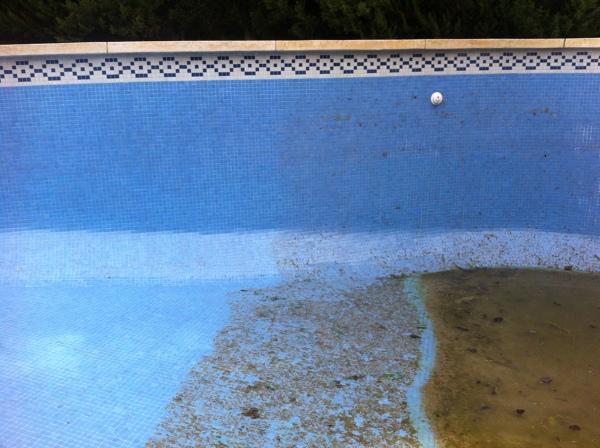 Foto limpieza de piscinas de house services m sl 691793 for Limpieza de piscinas