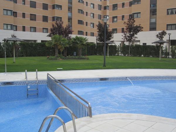 Foto limpieza de piscinas de arte limpieza 780067 for Limpieza de piscinas