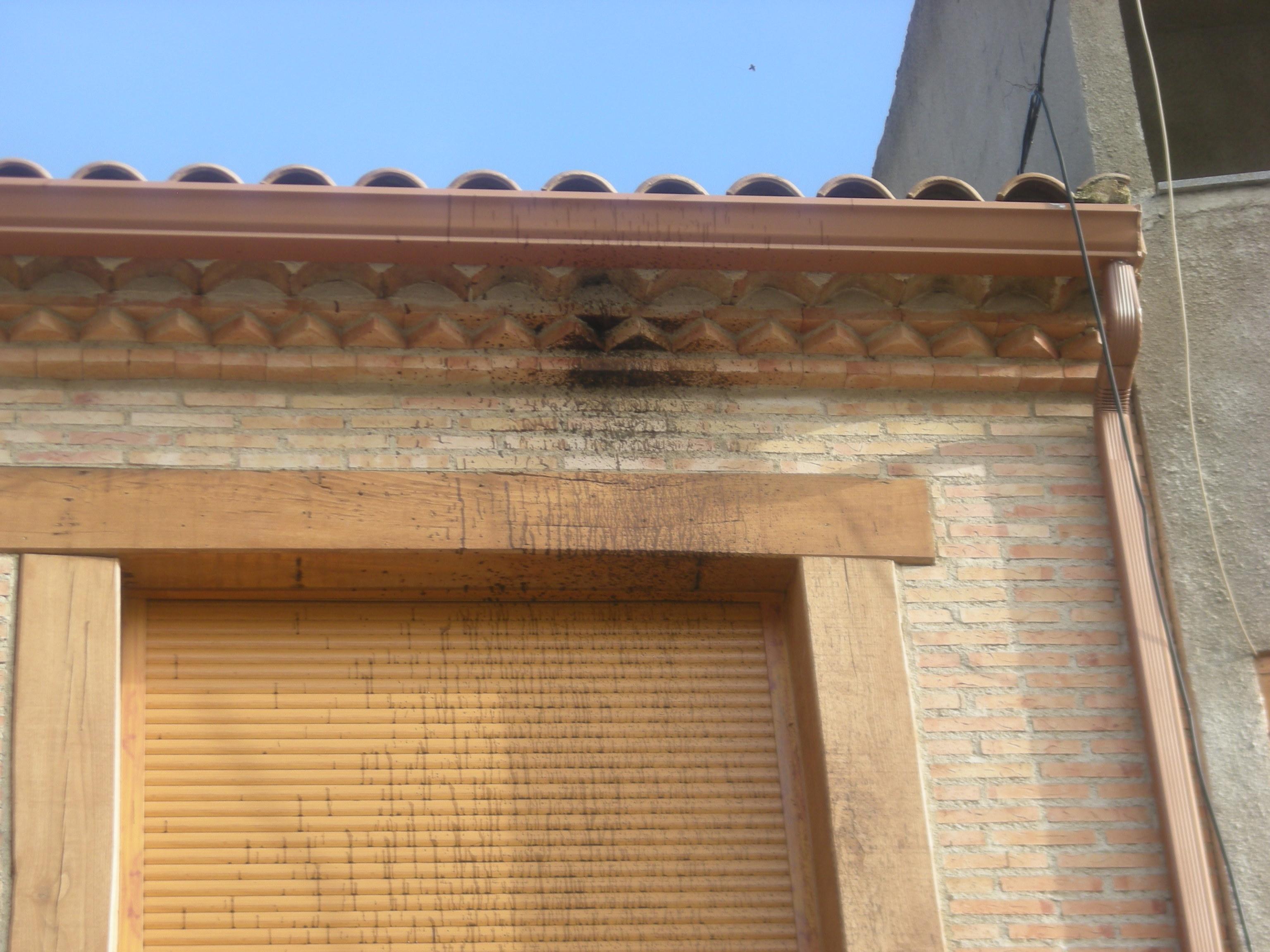 Limpieza de fachada ladrillo visto proyectos limpieza for Fachada de ladrillo