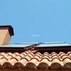 Placas solares madrid
