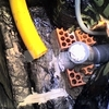Eliminación de humedades y moho en chalet