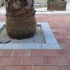 Alcorque con adoquin granallado y Adoquín tricolor