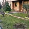 Arreglo jardin